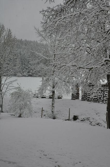 Première neige devant La Couve (15/11/2013)