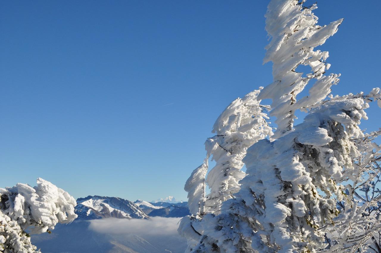 Mont Blanc depuis la Sure - Autrans - Nov 2017